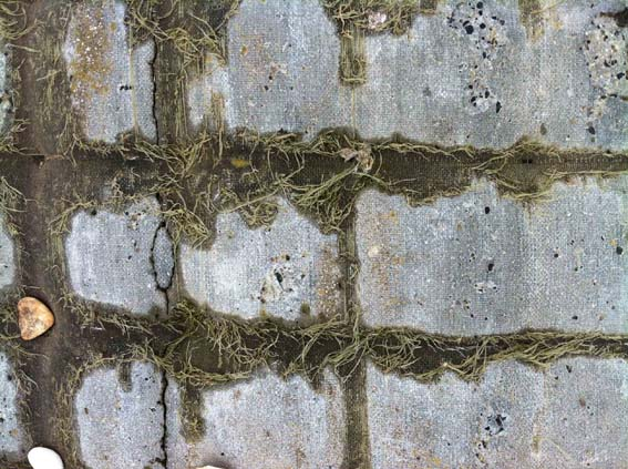 Alice Fox Humber bank concrete textile 1