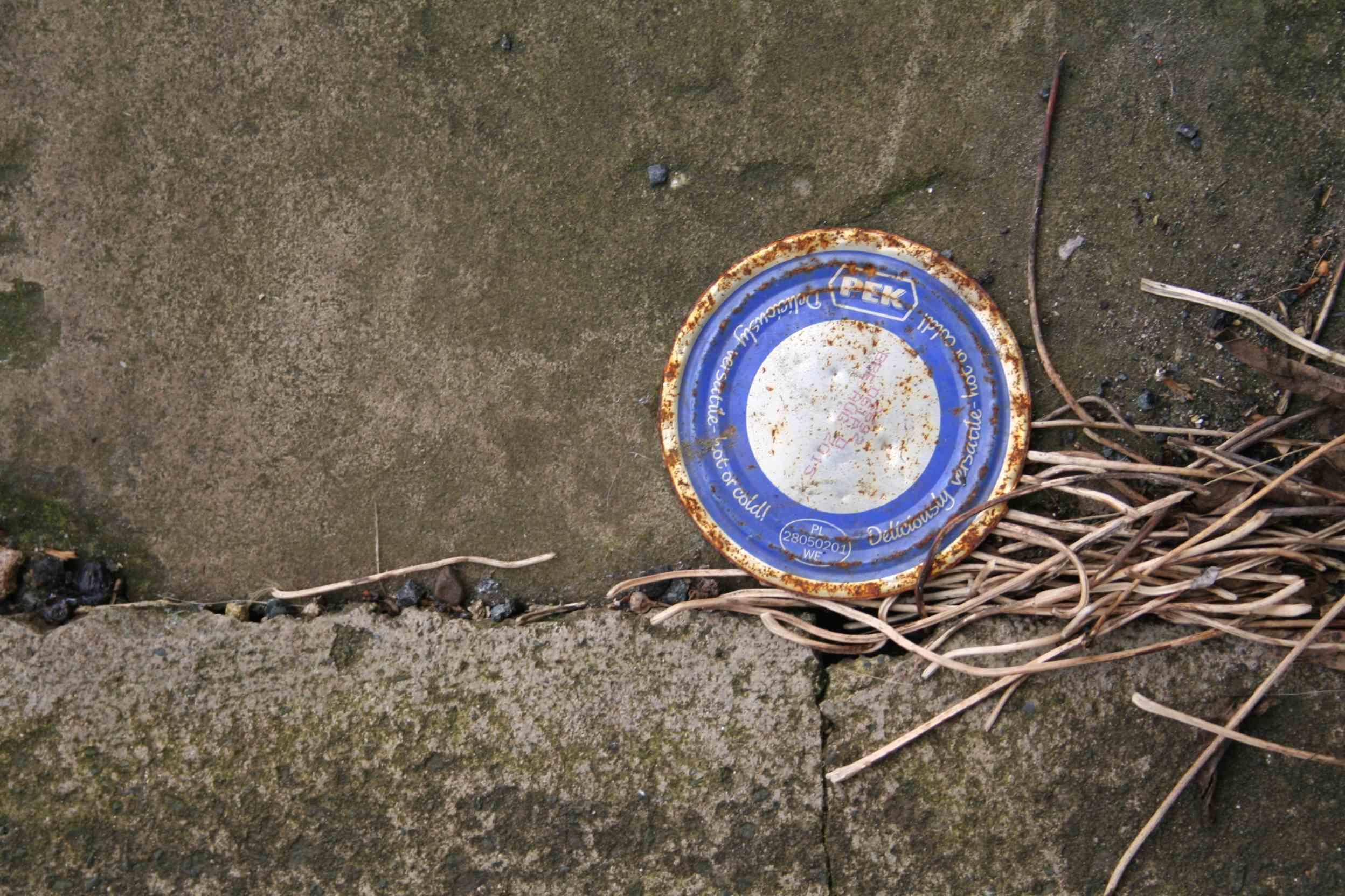 Alice Fox pavement marks 11