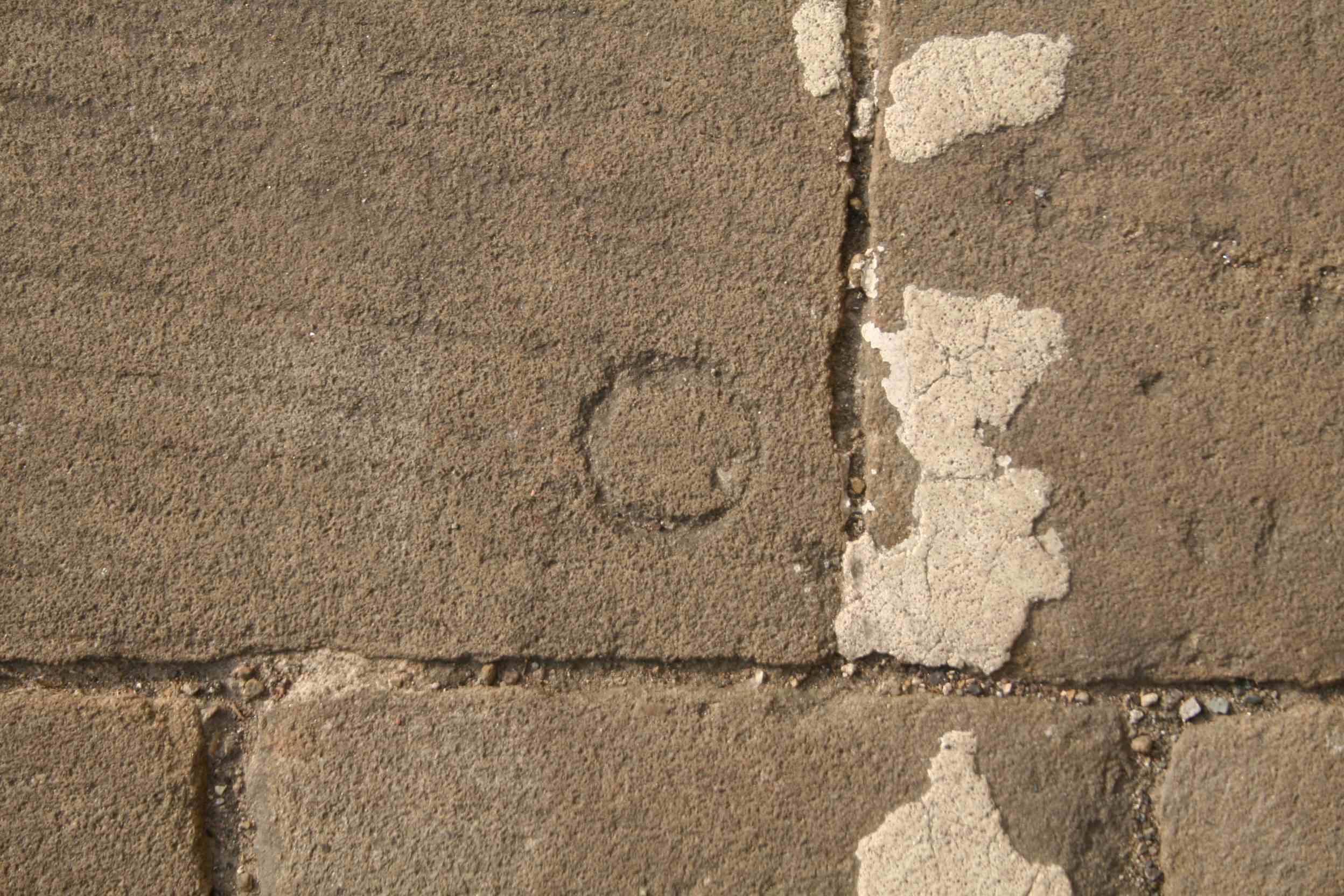 Alice Fox pavement marks 18