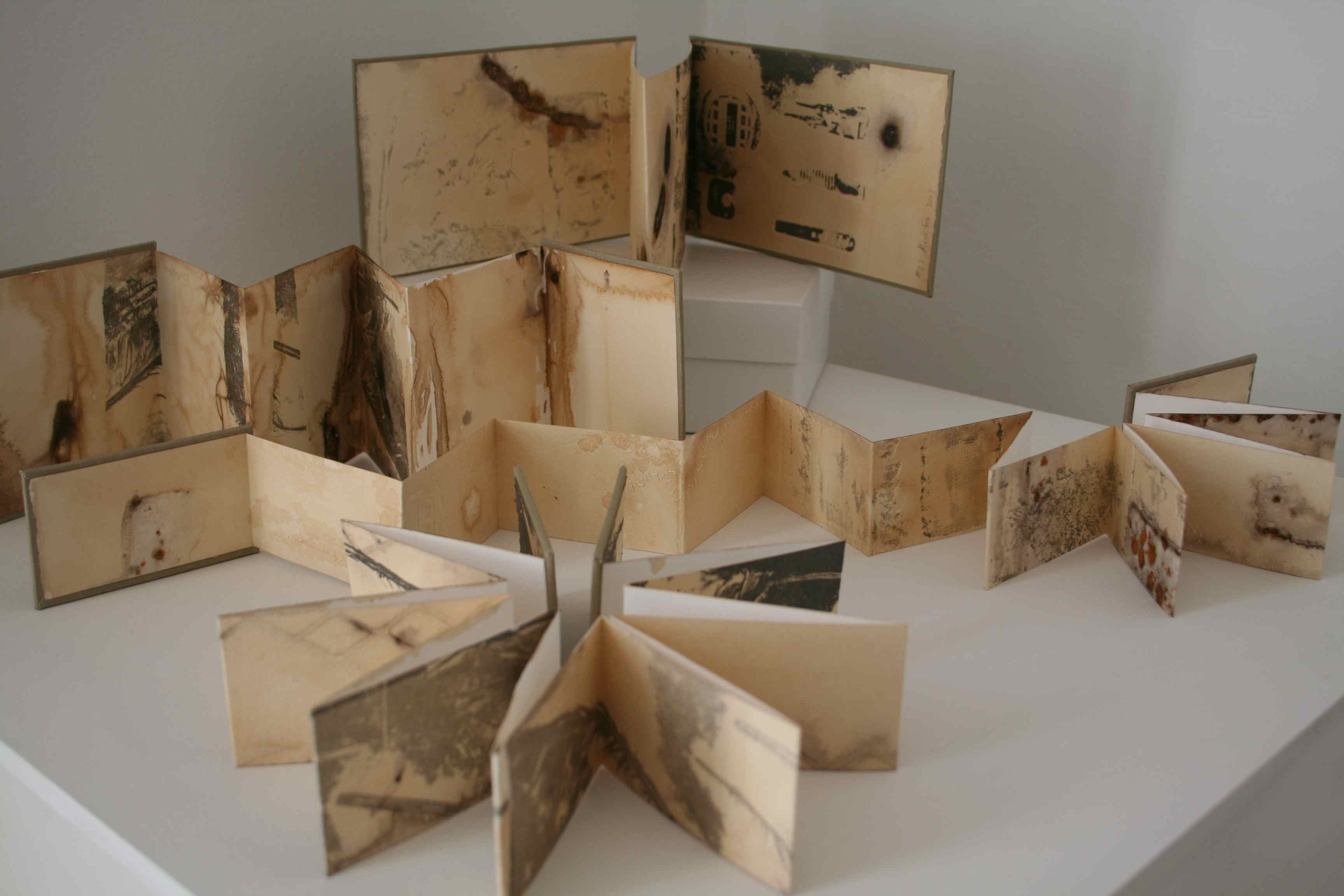 Alice Fox Tide Marks books at Gallery 49