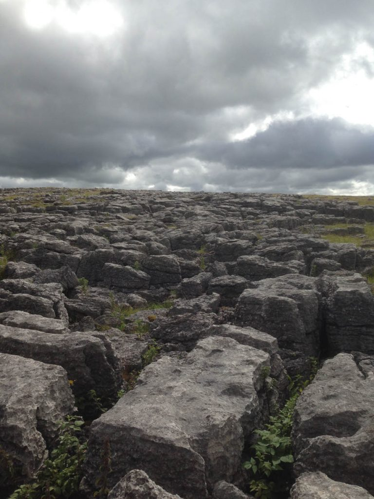 Alice_Fox_limestone_pavement