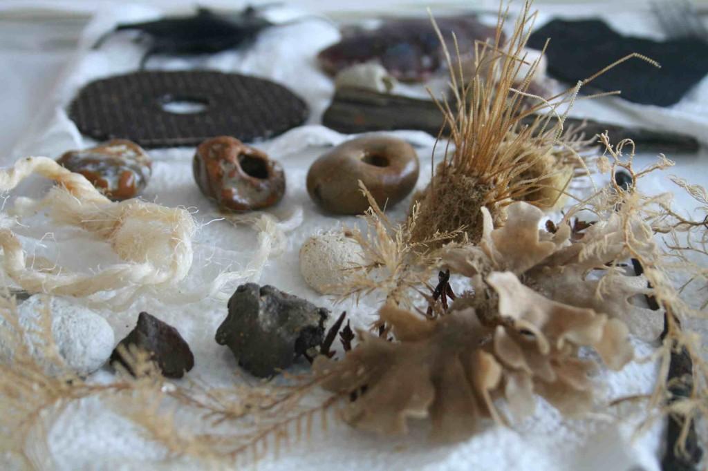 Alice Fox beach finds (Sherringham)