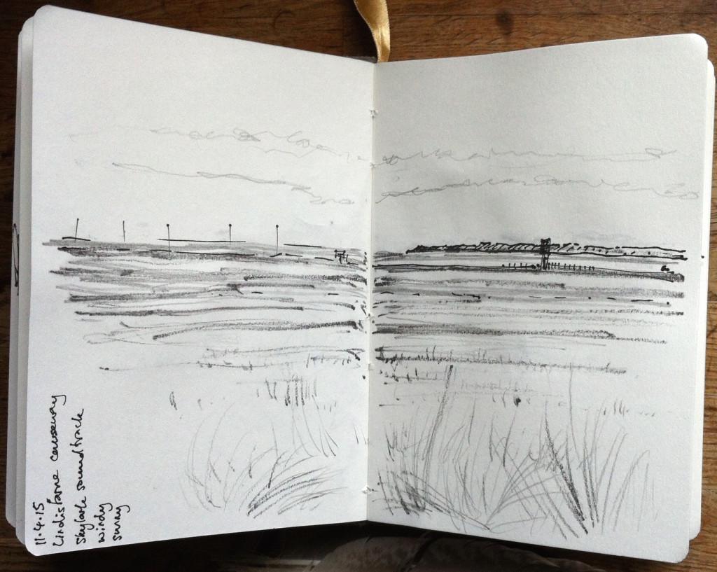 Alice Fox causeway sketch