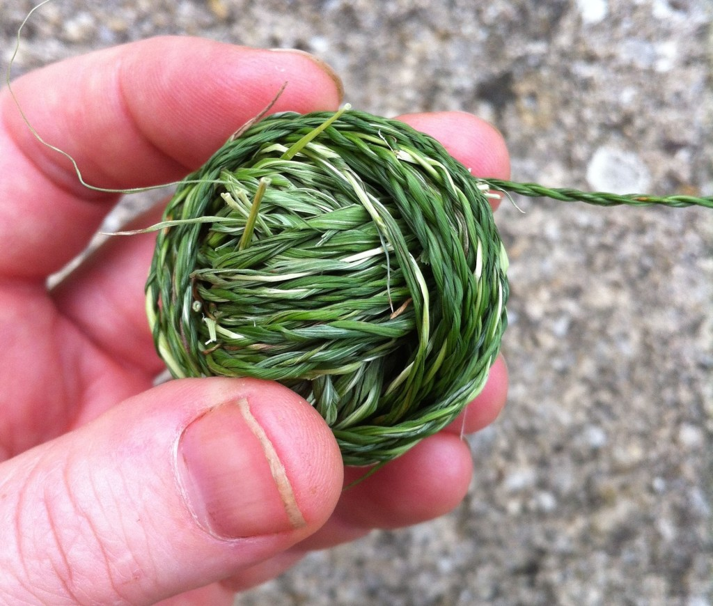 Alice Fox grass string