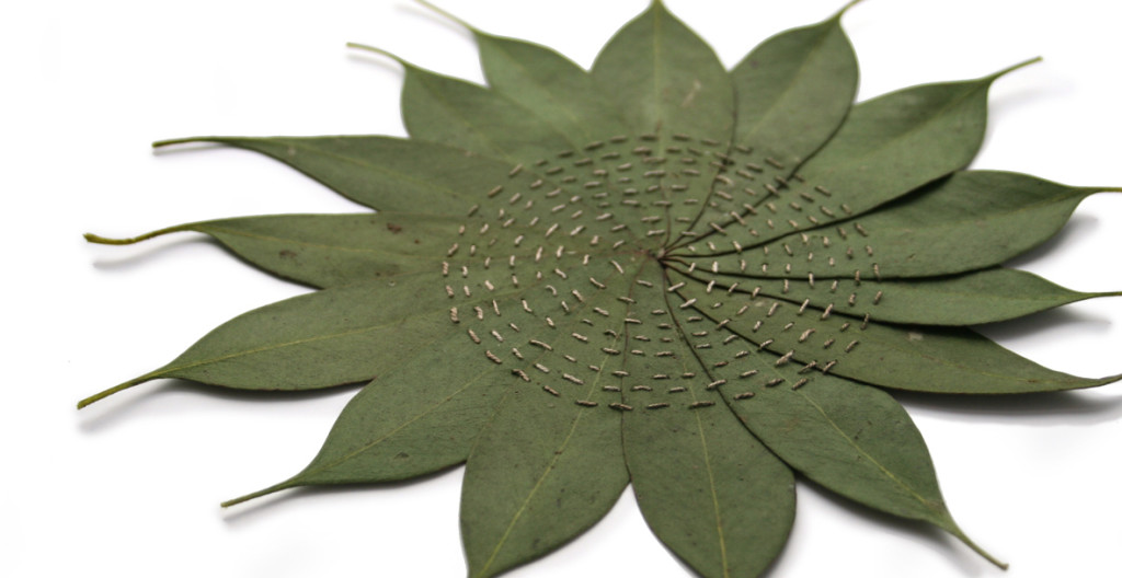 Alice_Fox_Eucalyptus_Circle_circular_stitching