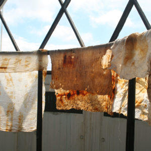 Alice Fox rust dyed fabric drying